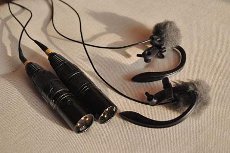 DPA 4060 ears